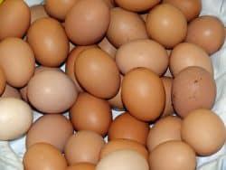 Eltűnnek a ketreces tojások