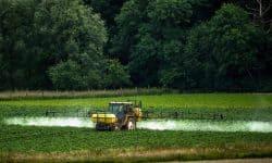 """""""A növényvédő szerek nélkülözhetetlenek a teljes népesség élelmezéséhez"""" – csupán egy mítosz"""